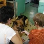 « Les chiens font partie intégrante de la cellule familiale, il est primordial que chaque membre de la famille respecte l'animal et ses besoins au même titre que l'animal doit respecter la famille avec laquelle il vit. Chacun apporte beaucoup à l'autre. Il ne faut pas oublier que le chien n'a qu'une idée en tête : Nous faire plaisir, interagir avec son maître. »