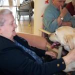 """« Nous rendons visite, depuis 8 ans, chaque semaine, une des structures (6 conventions sont signées avec des EHPAD), nous intervenons à l'hôpital de Niort, de St Maixent l'Ecole. Dans chaque structure, nous intervenons auprès de 6 à 8 résidents et des objectifs sont fixés par les équipes soignantes, car chaque action fait partie du projet de vie du résident. Des bilans sont réalisés (en présence de la direction, du médecin, des soignants et des bénévoles """"chiens visiteurs"""" de notre association) tous les 3 à 6 mois avec de nouveaux objectifs. »"""