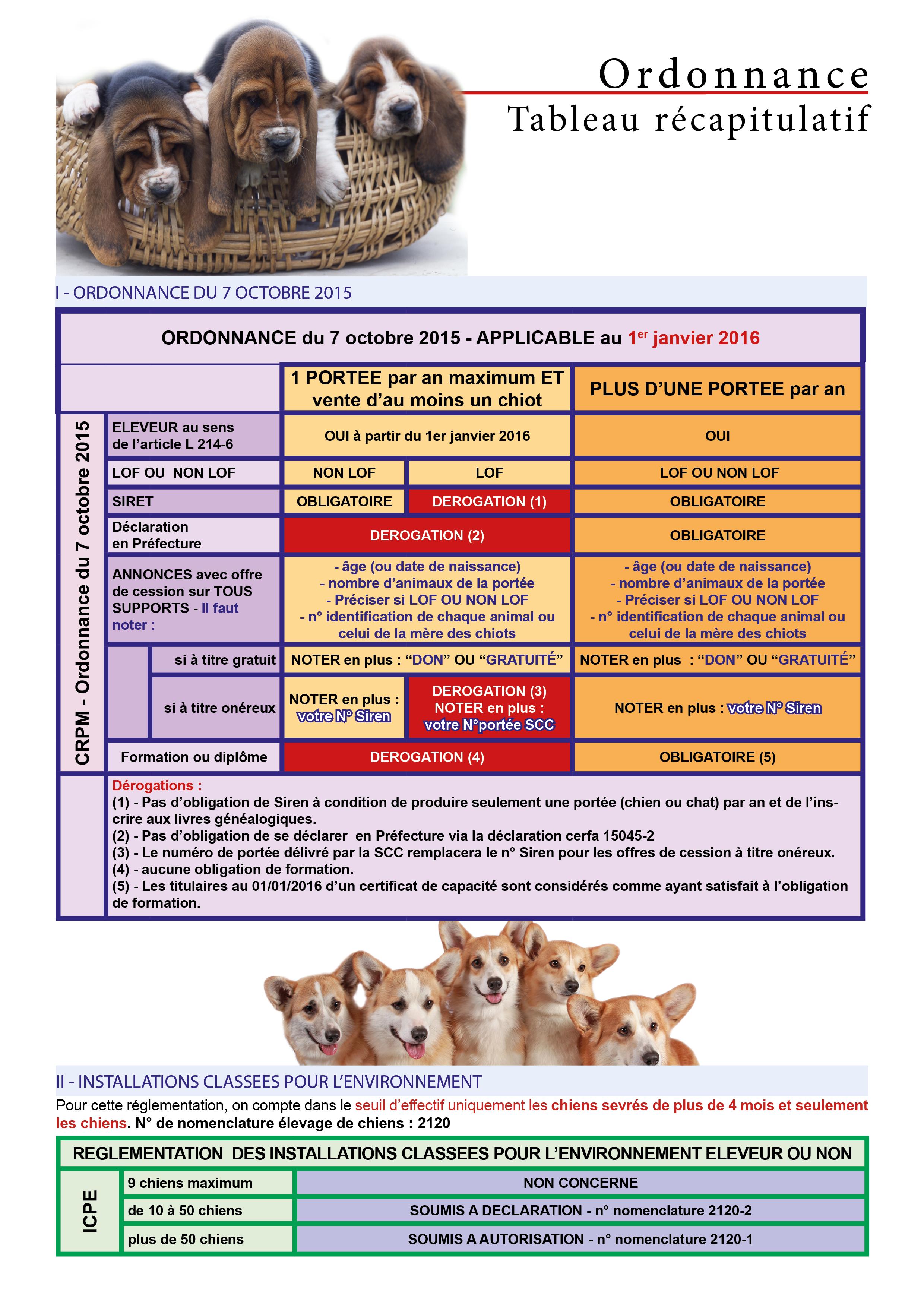 centrale canine banque d'information