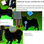 French Team Lapphund