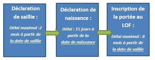 delais_administratif